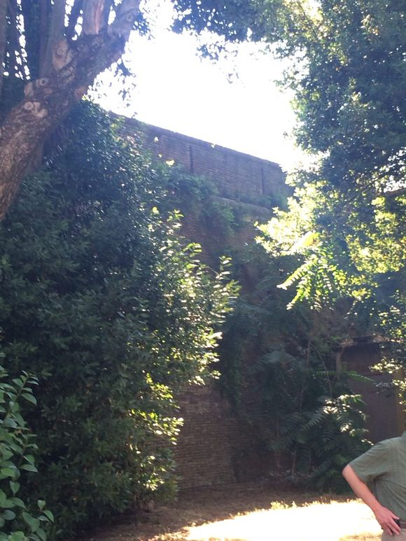 Our courtyard. Our bus stop. Our wall. Our walk ;-)
